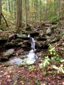 Beautiful waterfall along fire road. We loved the sound of water while we were running.